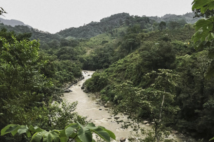 Cáceres was opposing construction of a hydroelectric project that would have put local communities at risk